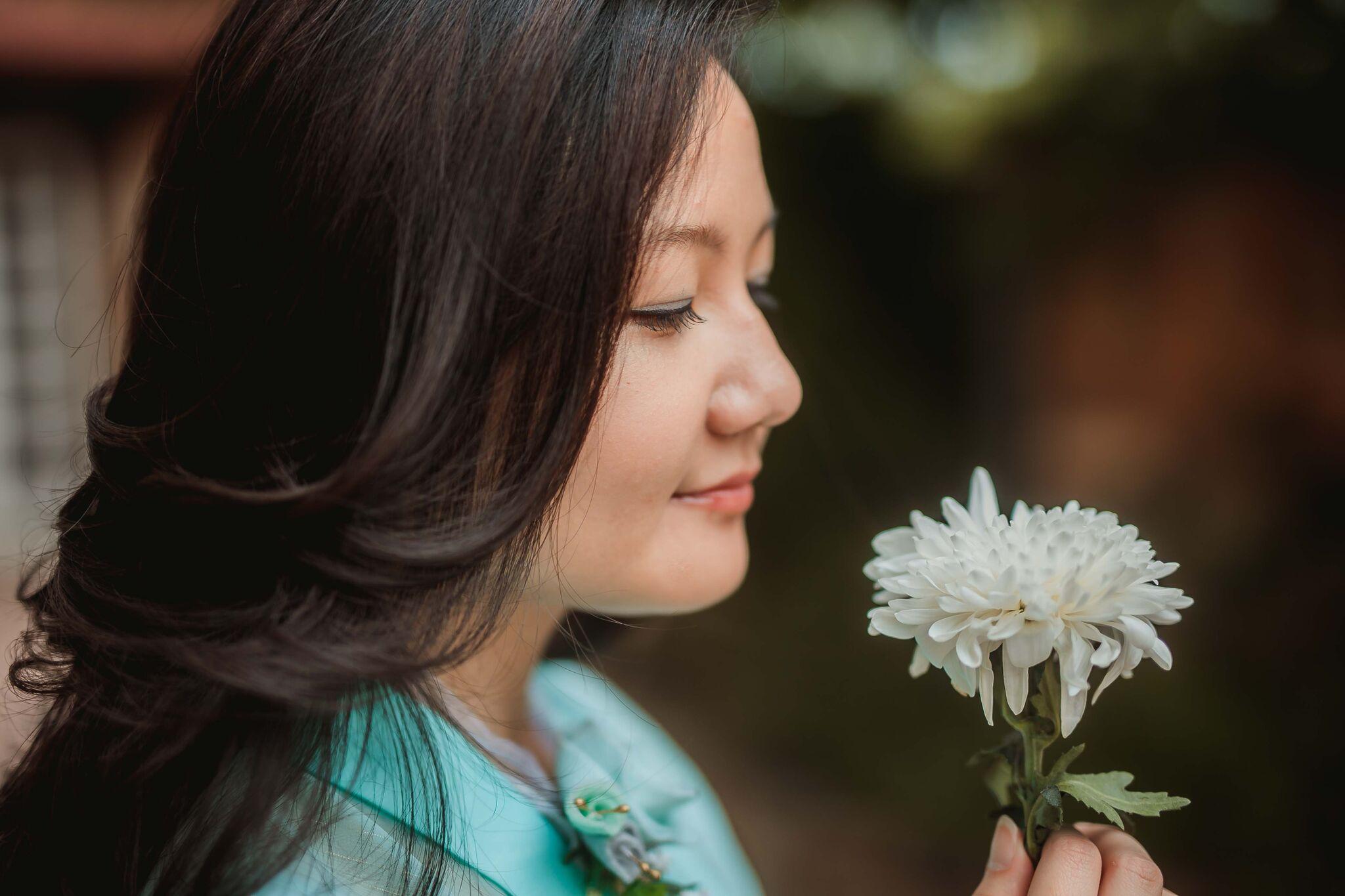 Fari Wu white chrysanthemum